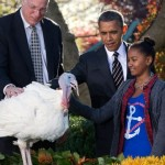 Sasha Obama pets Cobbler a 19-week old, 40-pound turkey, as he is pardoned by President Barack Obama on the occasion of Thanksgiving, 21, 2012, in the Rose Garden of the White House in Washington – photo courtesy AP